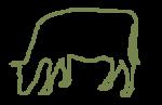 bovino-prodotti-bovinmarche